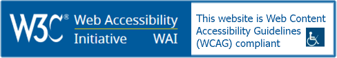 website accessible by people with special abilities